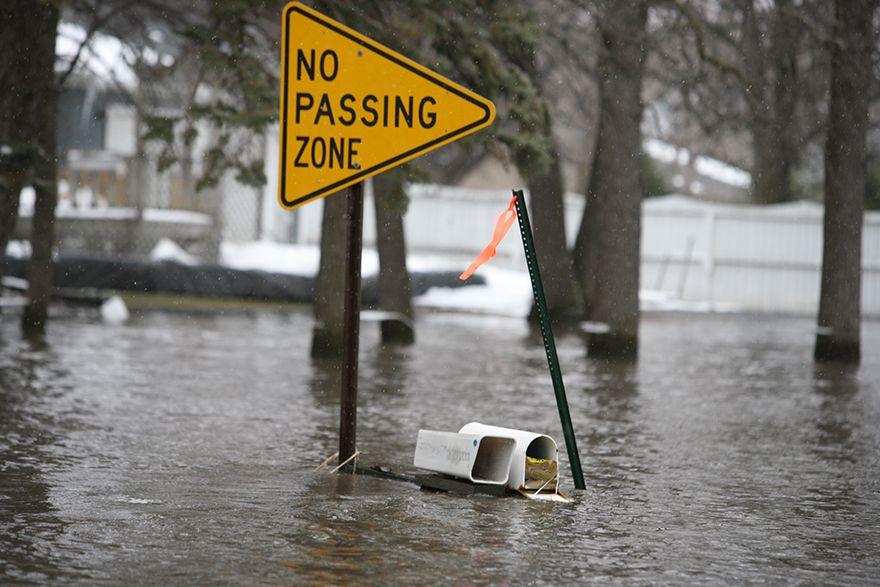 flood remodeling tips
